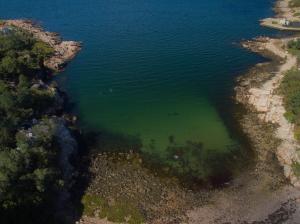 Folly Cove, Rockport, MA